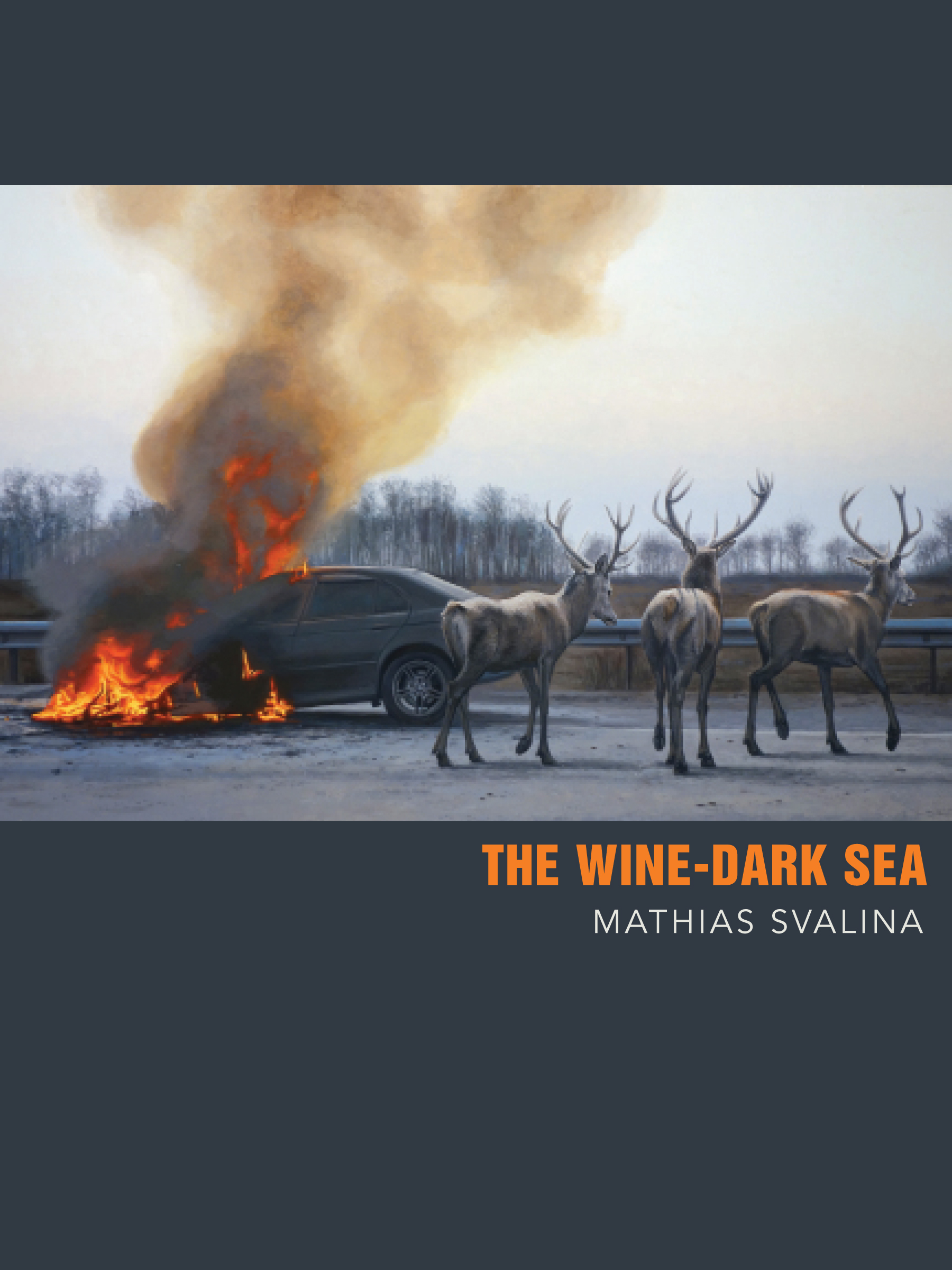 The Wine-Dark Sea by Mathias Svalina